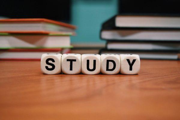 SEOの勉強方法