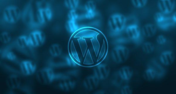 WordPressテーマは賢威を選ぶ
