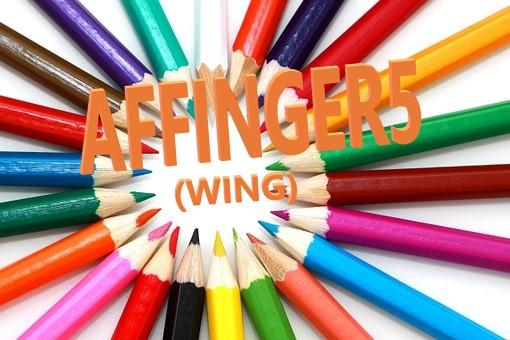 AFFINGER5(アフィンガー5)のデザイン済みデータ設定方法